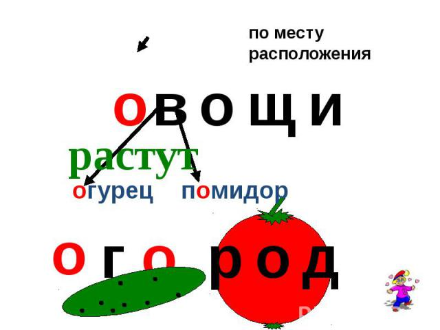 Овощи, огурец, помидор, огород