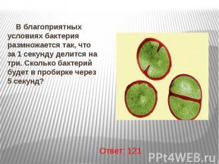 В благоприятных условиях бактерия размножается так, что за 1 секунду делится на