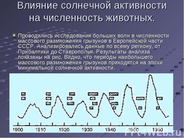 Проводились исследования больших волн в численности массового размножения грызунов в Европейской части СССР. Анализировались данные по всему региону, от Прибалтики до Ставрополья. Результаты анализа показаны на рис. Видно, что периоды наибольшего ма…