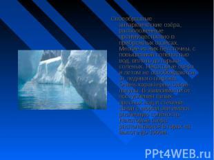 Своеобразные антарктические озёра, расположенные преимущественно в прибрежных оа