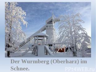 Der Wurmberg (Oberharz) im Schnee.