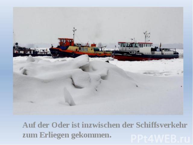 Auf der Oder ist inzwischen der Schiffsverkehr zum Erliegen gekommen.