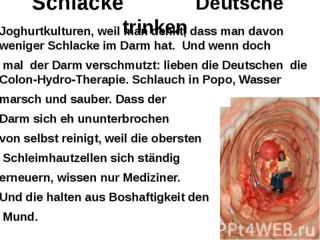 Schlacke Deutsche trinken Joghurtkulturen, weil man denkt, dass man davon weniger Schlacke im Darm hat. Und wenn doch mal der Darm verschmutzt: lieben die Deutschen die Colon-Hydro-Therapie. Schlauch in Popo, Wasser marsch und sauber. Dass der Darm …