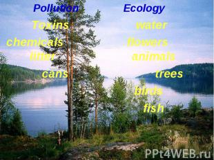 Pollution Ecology Pollution Ecology Toxins water chemicals flowers litter animal