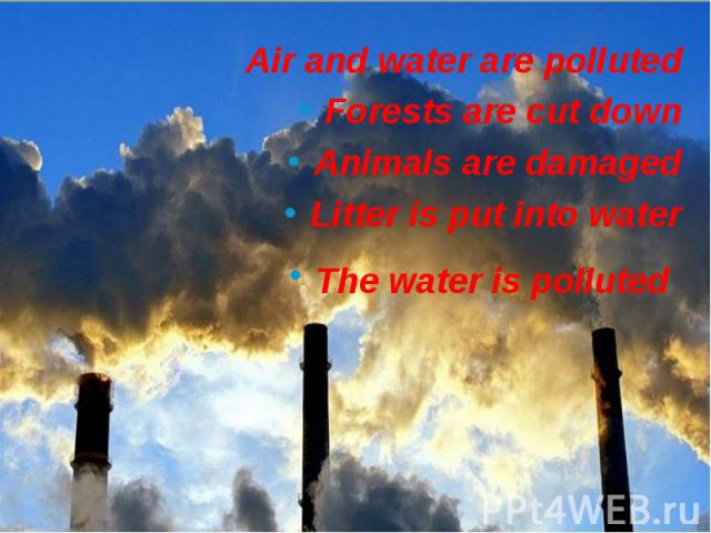 Air and water are polluted Air and water are polluted Forests are cut down Animals are damaged Litter is put into water The water is polluted