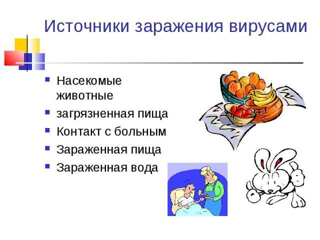 Насекомые животные Насекомые животные загрязненная пища Контакт с больным Зараженная пища Зараженная вода