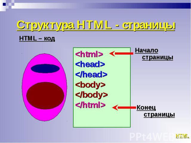 <html> <html> <head> </head> <body> </body> </html>