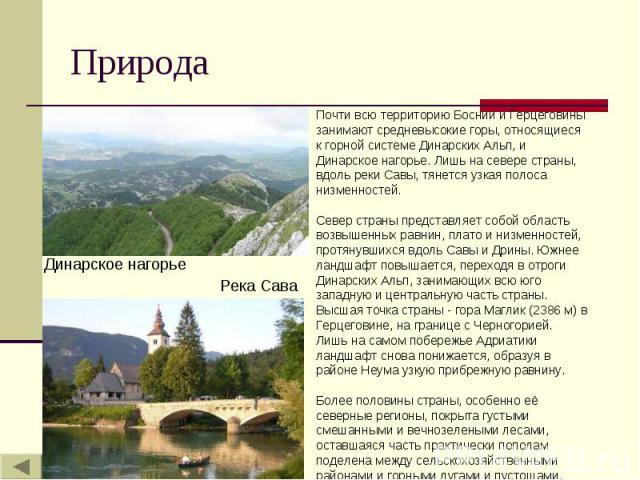 Природа Почти всю территорию Боснии и Герцеговины занимают средневысокие горы, относящиеся к горной системе Динарских Альп, и Динарское нагорье. Лишь на севере страны, вдоль реки Савы, тянется узкая полоса низменностей. Север страны представляет соб…