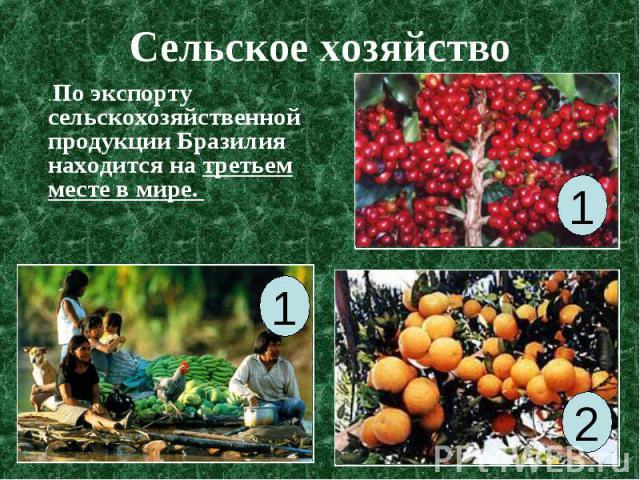 Сельское хозяйство . По экспорту сельскохозяйственной продукции Бразилия находится на третьем месте в мире.