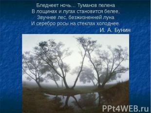 Бледнеет ночь… Туманов пелена В лощинах и лугах становится белее, Звучнее лес, б