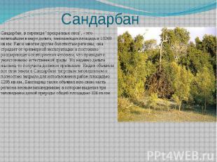 """Сандарбан Сандарбан, в переводе """"прекрасные леса"""", - это величайшая в"""