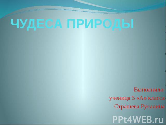 ЧУДЕСА ПРИРОДЫ Выполнила: ученица 5 «А» класса Страшева Русалина