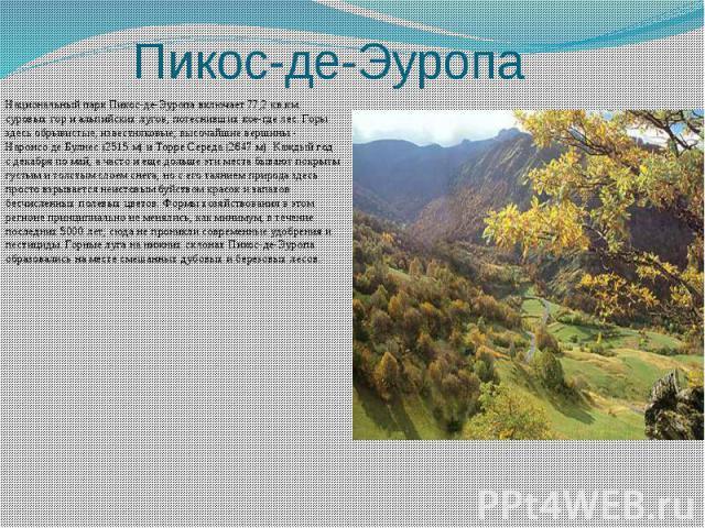 Пикос-де-Эуропа Национальный парк Пикос-де-Эуропа включает 77,2 кв.км. суровых гор и альпийских лугов, потеснивших кое-где лес. Горы здесь обрывистые, известняковые; высочайшие вершины - Наронсо де Булнес (2515 м) и Торре Середа (2647 м). Каждый год…
