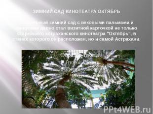 ЗИМНИЙ САД КИНОТЕАТРА ОКТЯБРЬ Уникальный зимний сад с вековыми пальмами и фикуса