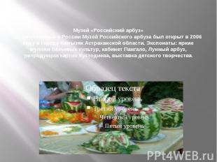 Музей «Российский арбуз» Единственный в России Музей Российского арбуза был откр
