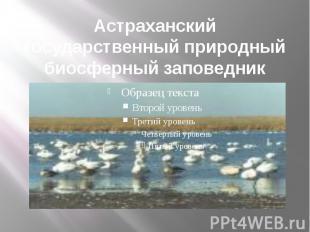 Астраханский государственный природный биосферный заповедник