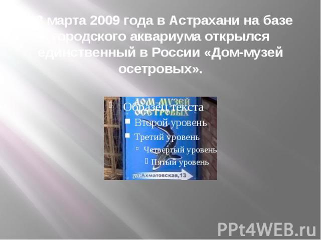 28 марта 2009 года в Астрахани на базе городского аквариума открылся единственный в России «Дом-музей осетровых».