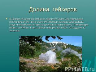 В Долине гейзеров на Камчатке действует более 200 термальных источников, в том ч
