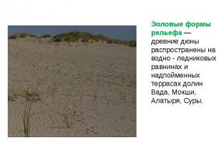 Эоловые формы рельефа — древние дюны распространены на водно - ледниковых равнин