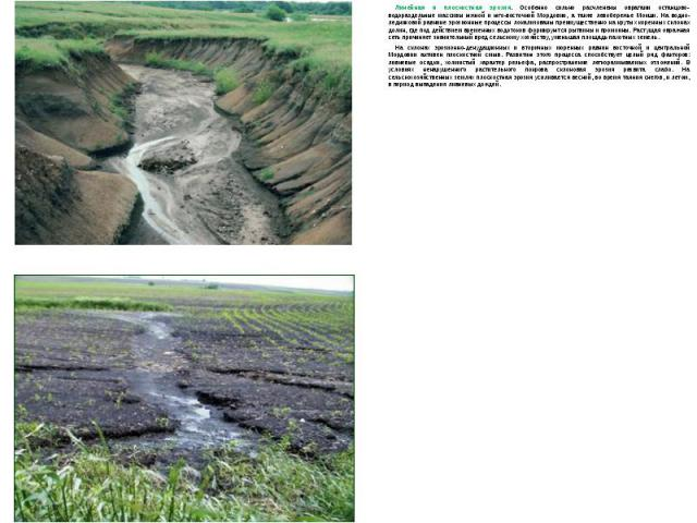 Линейная и плоскостная эрозия. Особенно сильно расчленены оврагами останцово-водораздельные массивы южной и юго-восточной Мордовии, а также левобережье Мокши. На водно-ледниковой равнине эрозионные процессы локализованы преимущественно на крутых кор…
