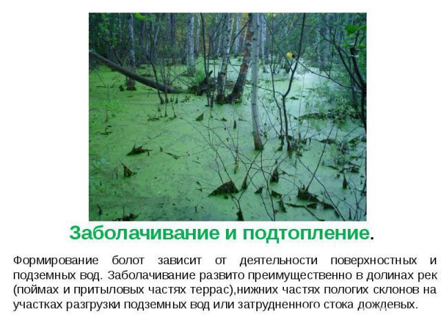Заболачивание и подтопление. Заболачивание и подтопление. Формирование болот зависит от деятельности поверхностных и подземных вод. Заболачивание развито преимущественно в долинах рек (поймах и притыловых частях террас),нижних частях пологих склонов…