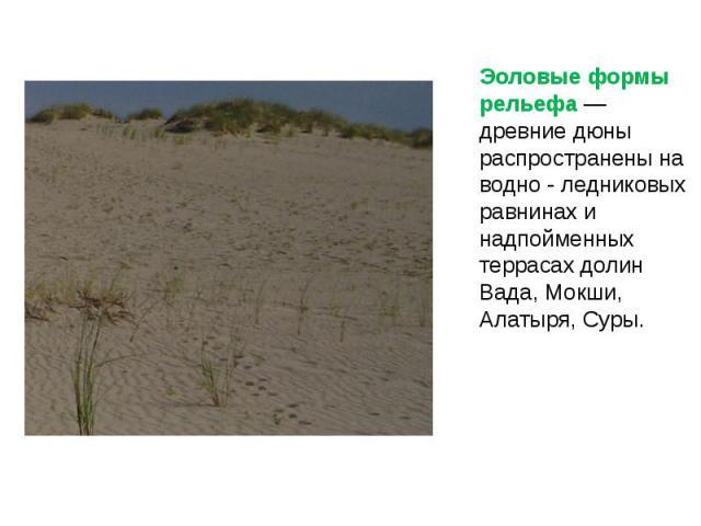 Эоловые формы рельефа — древние дюны распространены на водно - ледниковых равнинах и надпойменных террасах долин Вада, Мокши, Алатыря, Суры. Эоловые формы рельефа — древние дюны распространены на водно - ледниковых равнинах и надпойменных террасах д…