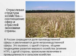 Отраслевая структура хозяйства— соотношение сфер и отраслей экономики страны. От