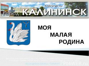 Авторы проекта обучающиеся МБОУ «СОШ № 2 г. Калининска Саратовской области»: Пот