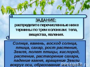 Солнце, камень, восход солнца, птица, сахар, рост растения, Земля, полет птицы,