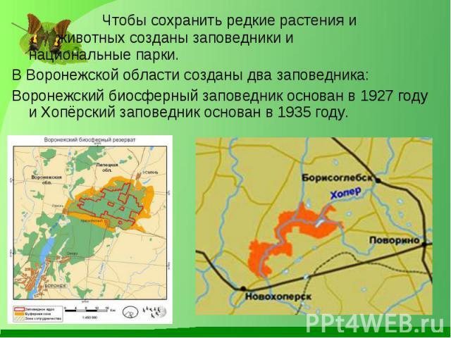 Чтобы сохранить редкие растения и животных созданы заповедники и национальные парки. Чтобы сохранить редкие растения и животных созданы заповедники и национальные парки. В Воронежской области созданы два заповедника: Воронежский биосферный заповедни…