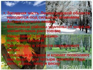 Западная часть Ленинградской области находится под сильным влиянием Атлантическо