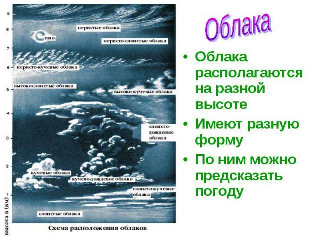 Облака располагаются на разной высоте Облака располагаются на разной высоте Имеют разную форму По ним можно предсказать погоду