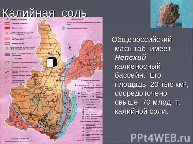 Калийная соль Общероссийский масштаб имеет Непский калиеносный бассейн. Его площадь 20 тыс км², сосредоточено свыше 70 млрд. т. калийной соли.