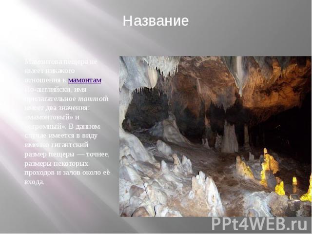 Название Мамонтова пещера не имеет никакого отношения кмамонтам. По-английски, имя прилагательноеmammothимеет два значения: «мамонтовый» и «огромный». В данном случае имеется в виду именно гигантский размер пещеры— точнее, ра…