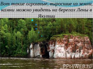 Вот такие огромные, выросшие из земли, камни можно увидеть на берегах Лены в Яку