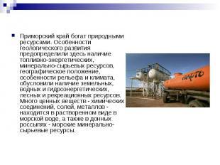 Приморский край богат природными ресурсами. Особенности геологического развития