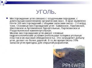 УГОЛЬ. Месторождение угля связано с осадочными породами, с длительным накопление