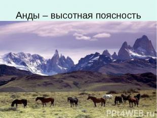 Анды – высотная поясность