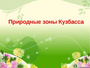 Природные зоны Кузбасса