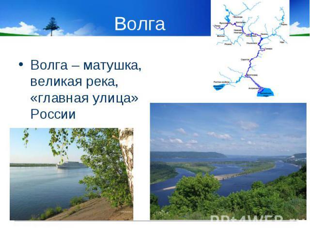 Волга – матушка, великая река, «главная улица» России Волга – матушка, великая река, «главная улица» России