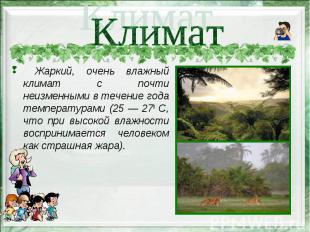 Жаркий, очень влажный климат с почти неизменными в течение года температурами (2
