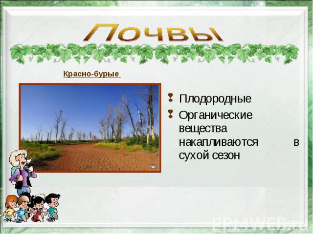 Плодородные Плодородные Органические вещества накапливаются в сухой сезон