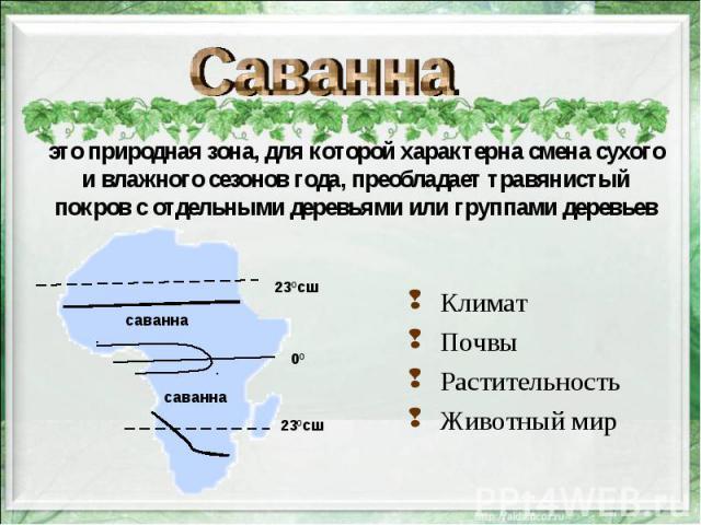 это природная зона, для которой характерна смена сухого и влажного сезонов года, преобладает травянистый покров с отдельными деревьями или группами деревьев Климат Почвы Растительность Животный мир