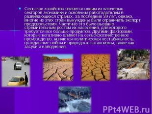 Сельское хозяйство является одним из ключевых секторов экономики и основным рабо