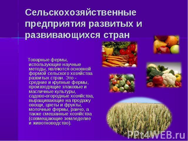 Товарные фермы, использующие научные методы, являются основной формой сельского хозяйства развитых стран. Это - средние и крупные фермы, производящие злаковые и масличные культуры, садово-огородные хозяйства, выращивающие на продажу овощи, цветы и ф…
