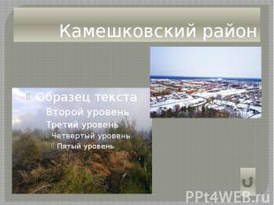 Камешковский район