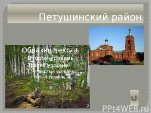 Петушинский район