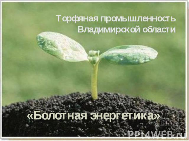 Торфяная промышленность Владимирской области
