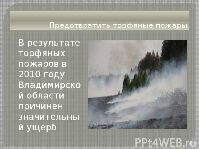 Предотвратить торфяные пожары В результате торфяных пожаров в 2010 году Владимирской области причинен значительный ущерб