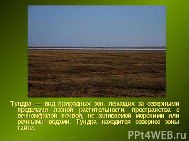 Тундра — вид природных зон, лежащих за северными пределами лесной растительности, пространства с вечномёрзлой почвой, не заливаемой морскими или речными водами. Тундра находится севернее зоны тайги. Тундра — вид природных зон, лежащих за северными п…